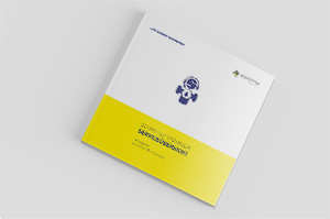 Schmitter Hydraulik Service Guide